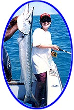 LIGHT TACKLE TROLLING: Barracuda